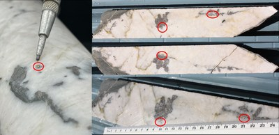 Figure 2 - HVD002 Visible gold ~95.4m whole core down-hole (Left side image), 95.30m – 95.60m cut core showing visible gold and mineralisation. Oblique view 95.30m – 95.60m showing visible gold (circled). (CNW Group/E79 Resources Corp.)