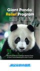 Facilitating the Research of Giant Panda Breeding, HungryPanda...