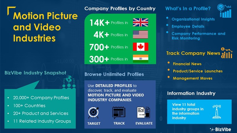 Snapshot of BizVibe's motion picture and video industry group and product categories.