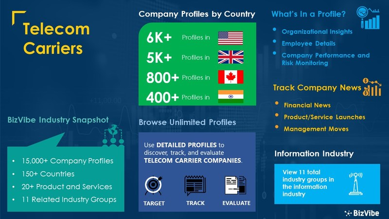 Snapshot of BizVibe's wired and wireless telecommunications carriers industry group and product categories.