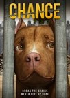 Vision Films to Release Animated Animal Advocacy Feature 'Chance' to VOD and DVD