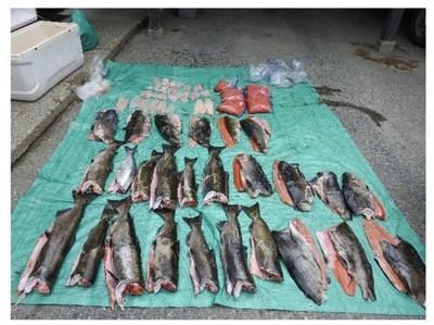 Photo présentée comme preuve lors de la procédure judiciaire (Groupe CNW/Pêches et Océans Canada, Région du Pacifique)