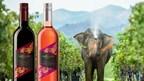Celebrando la cosecha excepcional de 2021 para el viñedo Monsoon Valley en Tailandia