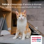 Mondou donne le coup d'envoi de la 4e édition de sa campagne Mondou Mondon au profit des refuges