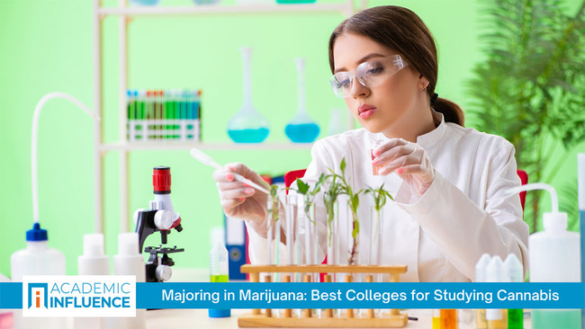 With increasing state legalization, all aspects of the legal marijuana business are growing rapidly. To meet the need, colleges are offering more courses and degrees in cannabis. AcademicInfluence.com explores these offerings, the leading books on the subject, and the top influencers/