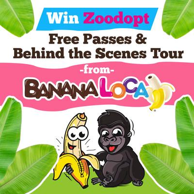 Banana Loca at Franklin Park Zoo