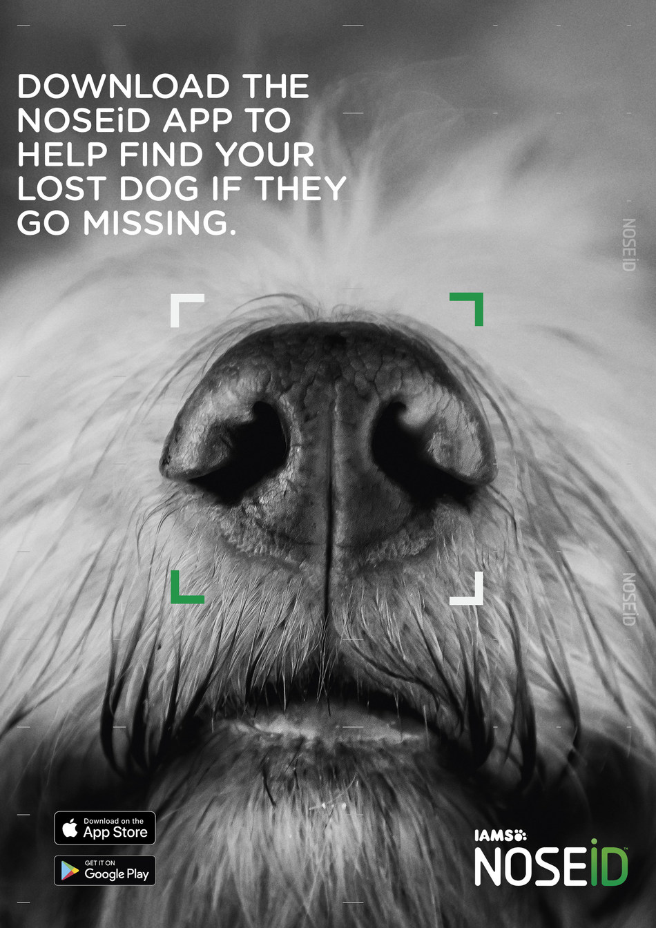 The new NOSEiD app from the IAMS brand helps bring lost dogs home.