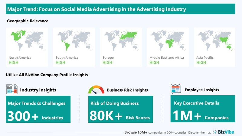 Snapshot of BizVibe's advertising industry group and product categories.