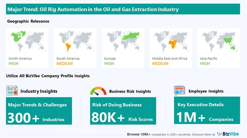Snapshot of BizVibe's oil and gas extraction industry group and product categories.