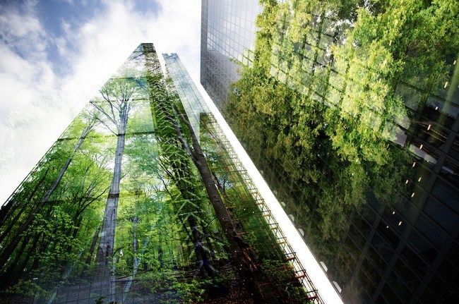 Buildings with reflection of trees