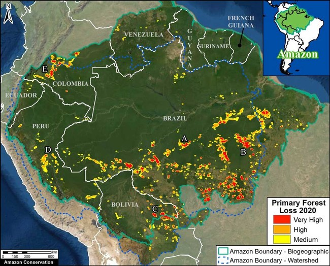 Amazon Conservation's partnership with SAS will help address a core source of forest loss: illegal, human-driven deforestation (image courtesy of Amazon Conservation's MAAP Program)