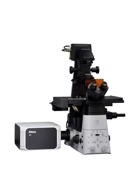 AX confocal microscope (configured with the ECLIPSE Ti2-E inverted research microscope)