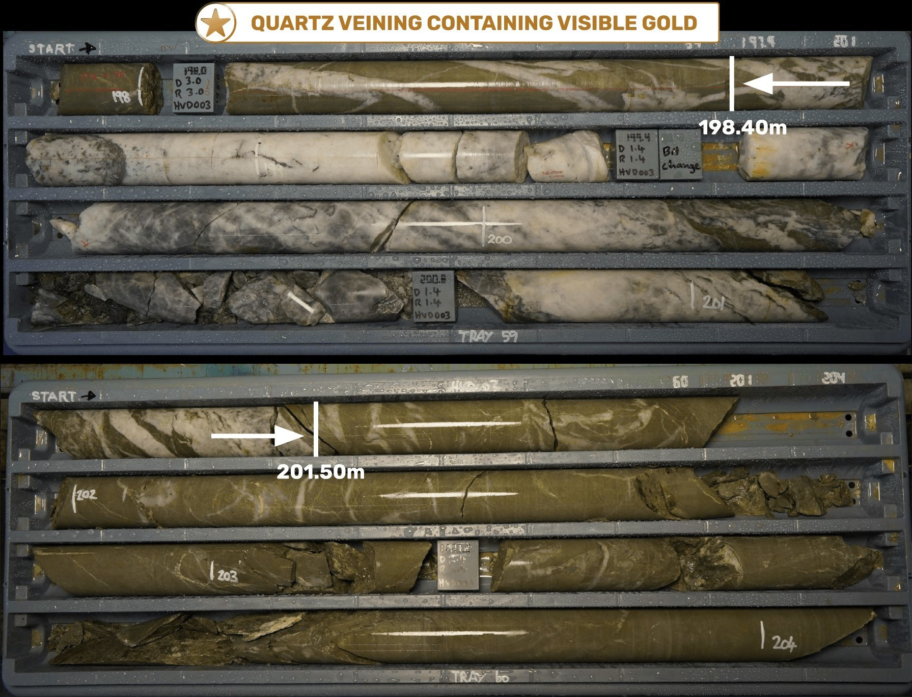 Figure 5 - HVD003 Quartz vein containing visible gold (198.40 – 201.50m down-hole), within hydrothermally altered and veined sedimentary unit (CNW Group/E79 Resources Corp.)