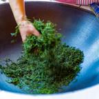 Tip A Cup To Suzhou's Tea Culture Virtually As Part Of #SecretsOfSuzhou Social Media Program