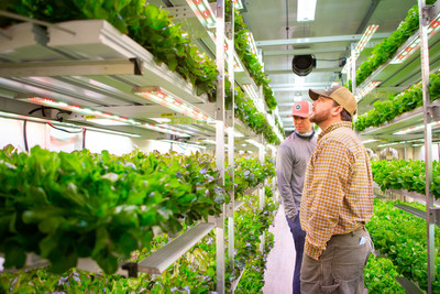 AmplifiedAg hydroponic container farm and technologies increased leafy green production over 50% for Better Fresh Farms.