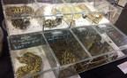 加拿大人敦促政府控制全球野生动物贸易,以防止另一场大流行