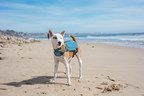 OUTWARD HOUND Drops Six New Life Jacket Colorways...