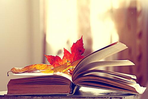 Ofqual announce autumn exams