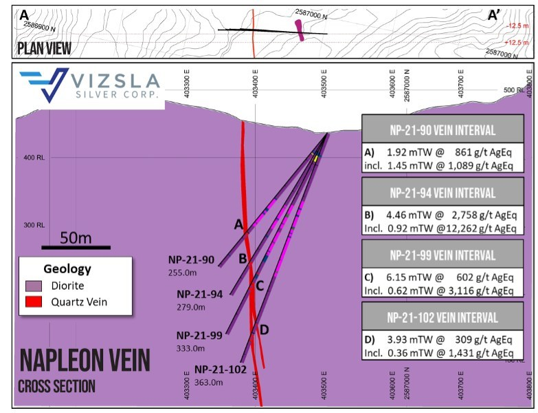 Figure 3: Cross section through most southerly holes at Napoleon. (CNW Group/Vizsla Silver Corp.)