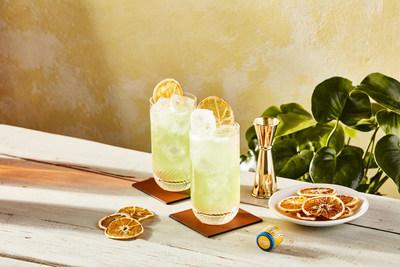 Johnnie Blonde Citrus Fizz Cocktails