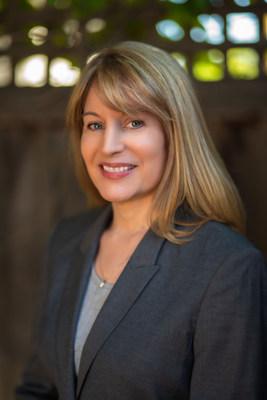 Anne Meisner, Amelia CFO