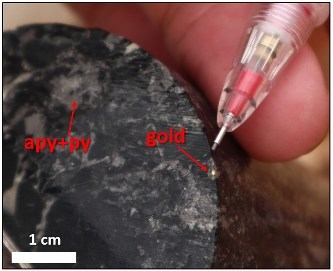 Figure 3: Visible gold observed in OGA0005 within sulphide rich breccia zone at 148.5m down hole. Abbreviations; apy = arsenopyrite, py = pyrite. (CNW Group/Outback Goldfields Corp.)