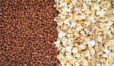 Opopop Flavor Wrapped™ Popcorn Kernels, the first innovation in microwave popcorn since the 1970s