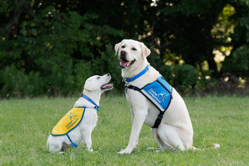 One in four Americans have a disability and this summer, from June 1 – July 31, Red Roof® will donate 5% of proceeds to Canine Companions®, the leader of the service dog industry that enhances independence for children, adults and veterans with disabilities through expertly trained service dogs.