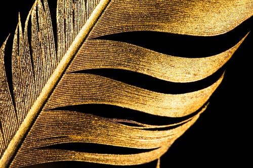 The gold standard: Tutors International provide elite education