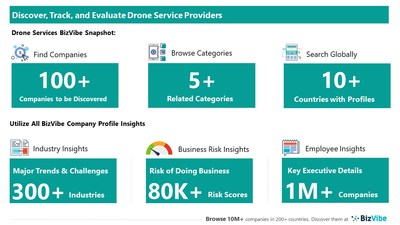 Snapshot of BizVibe's drone service providers and categories.