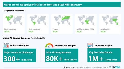 Snapshot of key trend impacting BizVibe's iron and steel mills industry group.