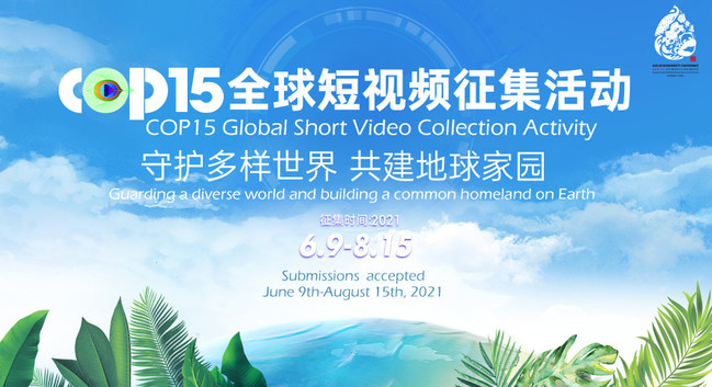 """A worldwide short video collection activity, """"Guarding a diverse world and building a common homeland on Earth,"""" was kicked off on June 9, 2021."""