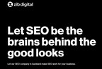 Zib Digital Explains Why SEO is Difficult to Get Right