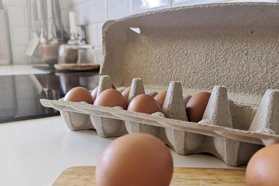 Caixa de ovos Smilepack 100% livre de plástico