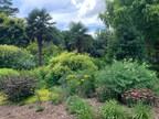 "Gardening Boom Creates ""An Almost Unprecedented Plant Shortage in America"""