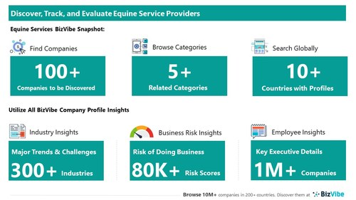 Snapshot of BizVibe's equine service provider profiles and categories.
