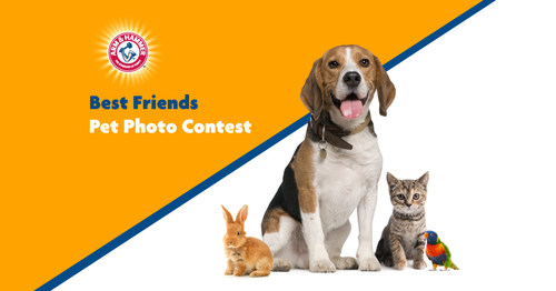 Protect Plus Air, ARM & HAMMER™, Petmate®, and Fetch for Pets launch the 2021 Best Friends Pet Photo Contest. The grand prize winner will receive a custom portrait of their pet and other prizes will go to the Top Dog, Top Cat and Top Non-Cat/Dog.