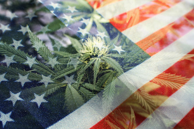 4th of July is expected to bring in large sales for the cannabis industry