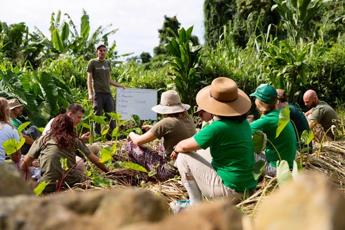 Experiential Learning Program at Pacific Quest is accredited by Cognia