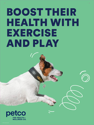 Petco encourages healthy summer habits for pets, shares essential tips to enhance their exercise routine and whole health.