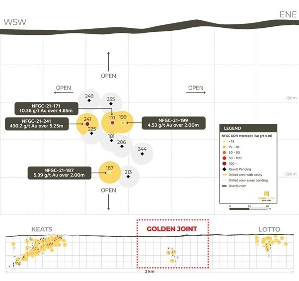 Figure 1. Golden Joint location and long-section  Note: Golden Joint HW intervals not included on this long-section (see Table 2) (CNW Group/New Found Gold Corp.)