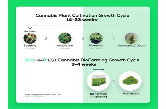 BioHarvest Cannabis BioFarming Life Cycle (PRNewsfoto/BioHarvest Sciences Inc.)