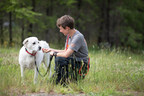 ASPCA Announces the Development of Two New Animal Recovery...