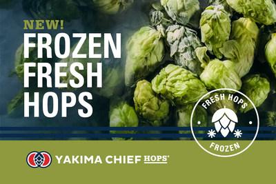 A Yakima Chief Hops, uma fornecedora global de lúpulo, lançou um novo produto inovador, Frozen Fresh Hops, que permite que o lúpulo recém-colhido seja enviado para um número maior de cervejeiros de todo o mundo para que eles produzam cervejas estilo fresh hop IPA (de lúpulo fresco) para a comunidade de cerveja artesanal. (PRNewsfoto/Yakima Chief Hops)