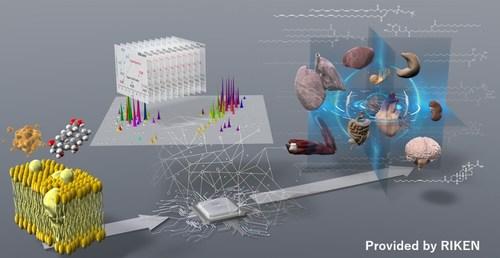 Non-targeted lipidomics to address the biological questions © RIKEN