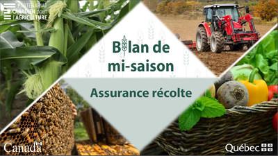 La FADQ présente le bilan de mi saison en assurance récolte pour la province de Québec. Ce bilan, en date du 6 juillet 2021, décrit les conditions climatiques et leurs effets sur les cultures produites. (Groupe CNW/La Financière agricole du Québec)