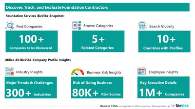 Snapshot of BizVibe's foundation service provider profiles and categories.