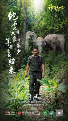 Epic journey of Asian elephant family