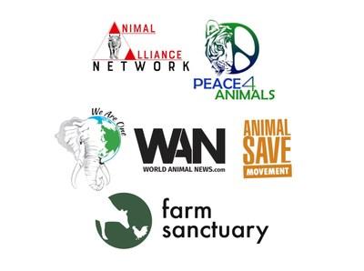 Peace 4 Animals