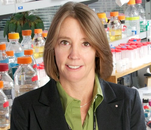 Beverly L. Davidson, PhD, Director of the Raymond G. Perelman Center for Cellular and Molecular Therapeutics and Chief Scientific Strategy Officer at Children's Hospital of Philadelphia